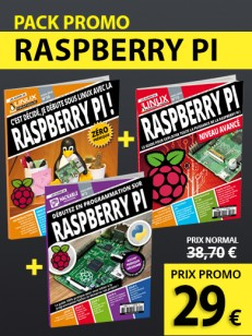 L'INTEGRALE RASPBERRY PI